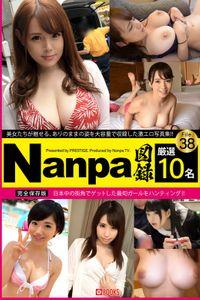 Nanpa図録 File.38