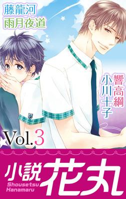 小説花丸 Vol.3-電子書籍
