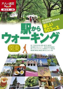 駅からウォーキング 関東-電子書籍