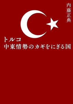 トルコ 中東情勢のカギをにぎる国-電子書籍