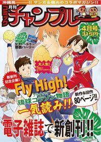 月刊コミックチャンプルー2012年4月号