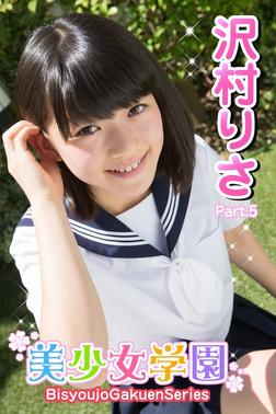 美少女学園 沢村りさ Part.05-電子書籍