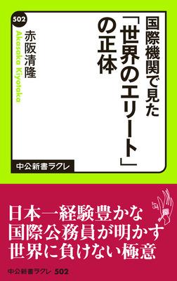 国際機関で見た 「世界のエリート」の正体-電子書籍