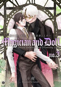 艶めく闇と溺れる光―魔術師と人形― (3)-電子書籍