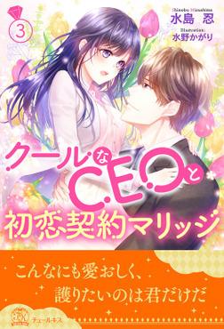 クールなCEOと初恋契約マリッジ【3】-電子書籍