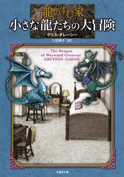 龍のすむ家 小さな龍たちの大冒険-電子書籍