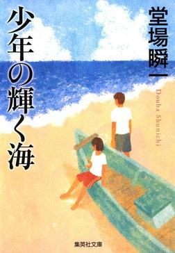 少年の輝く海-電子書籍