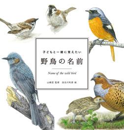 子どもと一緒に覚えたい 野鳥の名前-電子書籍