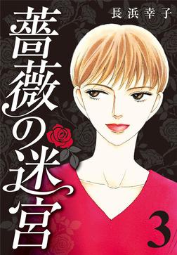 薔薇の迷宮 ~義兄の死、姉の失踪、妹が探し求める真実~ (3)-電子書籍