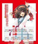 The Melancholy of Haruhi Suzumiya (Light Novel): Bookshelf Skin