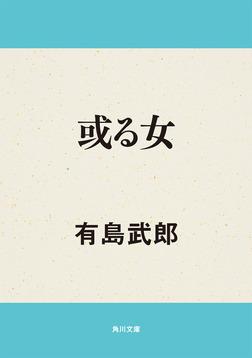 或る女-電子書籍