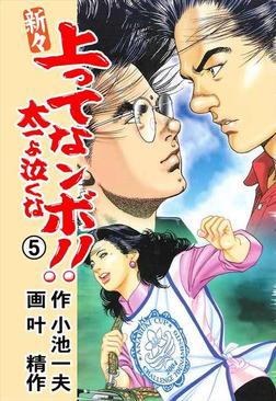 新々 上ってなンボ!! ~太一よ泣くな~ 5-電子書籍