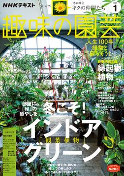 NHK 趣味の園芸 2021年1月号-電子書籍