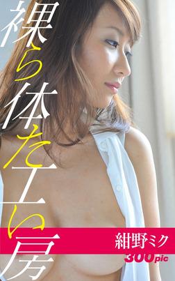 裸体工房【紺野ミク3】-電子書籍