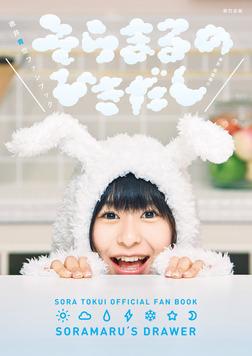 徳井青空ファンブック そらまるのひきだし-電子書籍