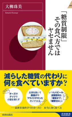 「糖質制限」その食べ方ではヤセません-電子書籍