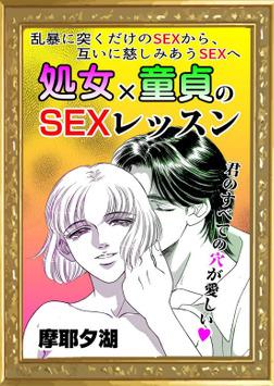 処女×童貞のSEXレッスン-電子書籍