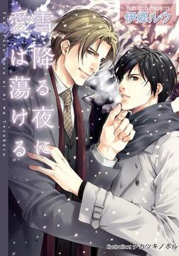 雪降る夜に愛は蕩ける-電子書籍