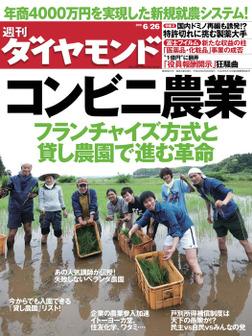 週刊ダイヤモンド 10年6月26日号-電子書籍