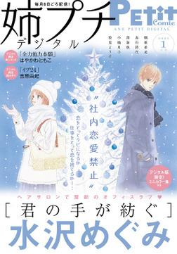 姉プチデジタル【電子版特典付き】 2021年1月号(2020年12月8日発売)-電子書籍