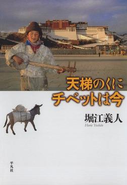 天梯のくに チベットは今-電子書籍