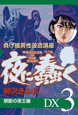 夜に蠢く 禁断の夜王編 DX3-電子書籍