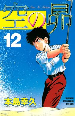 空の昴(12)-電子書籍