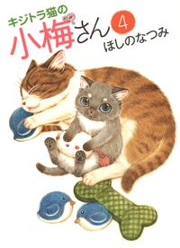 キジトラ猫の小梅さん / 4