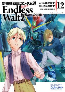 新機動戦記ガンダムW Endless Waltz 敗者たちの栄光(12)-電子書籍
