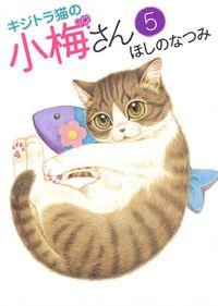 キジトラ猫の小梅さん(5)