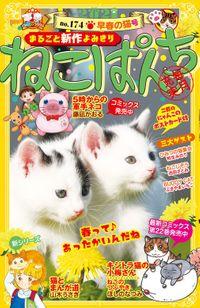 ねこぱんち No.174 早春の猫号