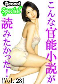 こんな官能小説が読みたかった!vol.28