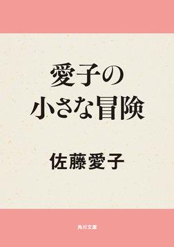 愛子の小さな冒険-電子書籍
