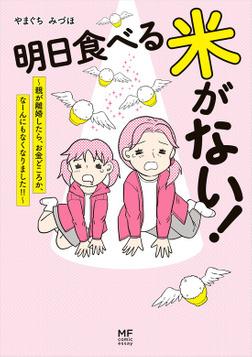 明日食べる米がない! ~親が離婚したら、お金どころか、なーんにもなくなりました!!~-電子書籍