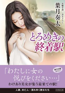 とろめきの終着駅-電子書籍