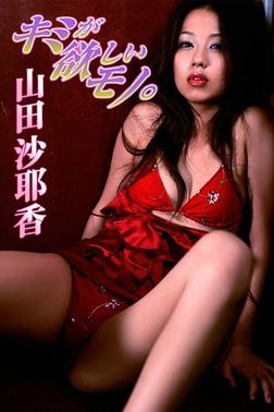 山田沙耶香 キミが欲しいモノ。【image.tvデジタル写真集】-電子書籍