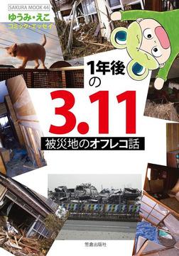 1年後の3.11 被災地のオフレコ話-電子書籍