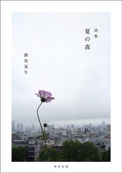 【写真詩集】夏の森-電子書籍