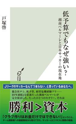 低予算でもなぜ強い?~湘南ベルマーレと日本サッカーの現在地~-電子書籍