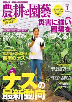 農耕と園芸2019年1月号-電子書籍