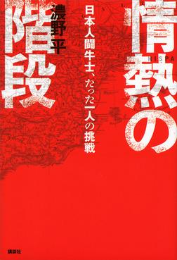 情熱の階段 日本人闘牛士、たった一人の挑戦-電子書籍