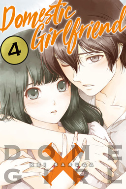 Domestic Girlfriend Volume 4