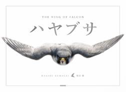 ハヤブサ THE WING OF FALCON-電子書籍