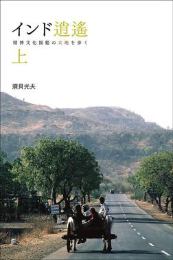 インド逍遥(上) 精神文化揺籃の大地を歩く-電子書籍