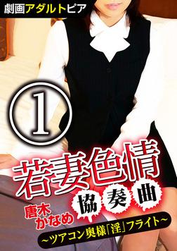 若妻色情協奏曲 (1) ツアコン奥様「淫」フライト-電子書籍