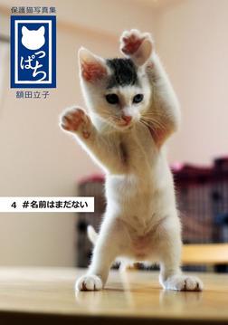 保護猫写真集 ねこっぱち! (4) #名前はまだない-電子書籍