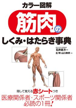 カラー図解 筋肉のしくみ・はたらき事典-電子書籍