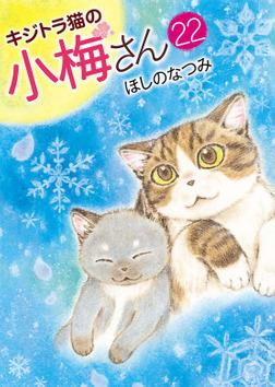 キジトラ猫の小梅さん (22)-電子書籍