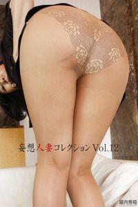 妄想人妻コレクションVol.12