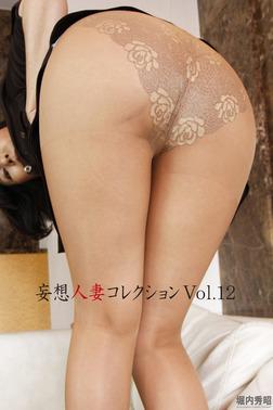 妄想人妻コレクションVol.12-電子書籍